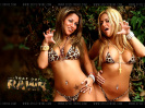 Spice Twins Thumbnail (3)